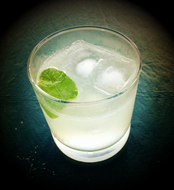 La moda que no cesa. Catas de gin tonic, un paso más en la devoción por esta bebida